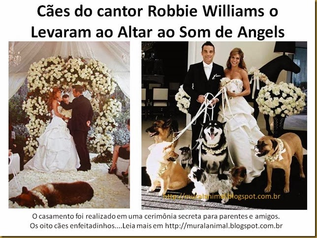 Cães do cantor Robbie Williams
