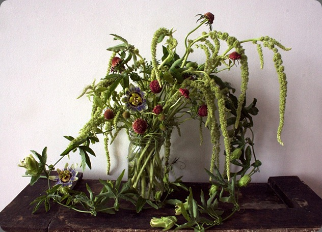 984x588-kKge1Wecp1DdtJLw ariel dearie flowers