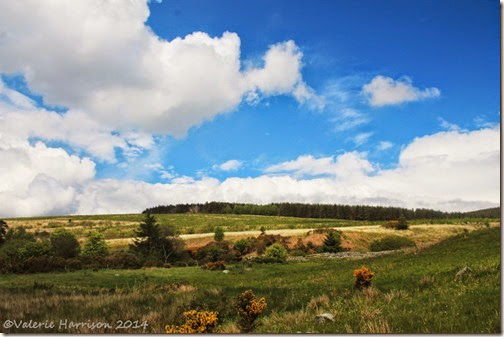 18-boreland-of-southwick