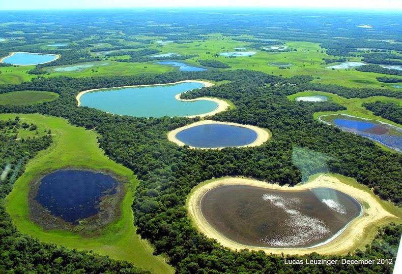 pantanal-1