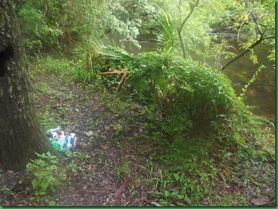 #25 river path 010