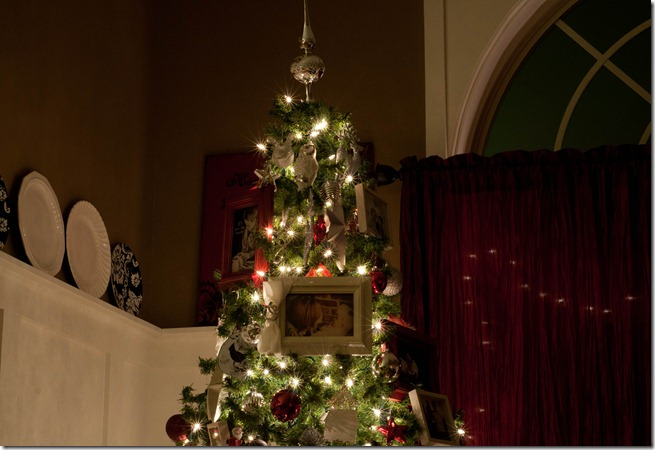 Christmas tree lights-2