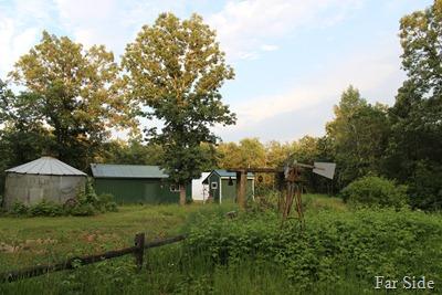 The gardens 2013