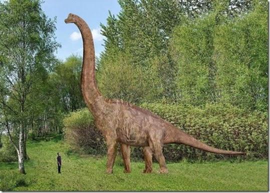 Brachiosauros_thumb