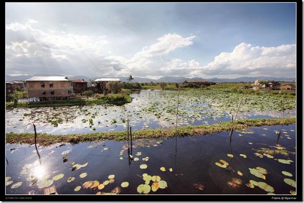 Myanmar317