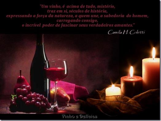 frase-vinho-camila-coletti
