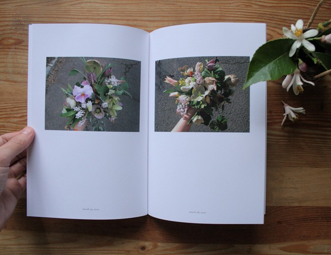 Jaime Rugh - Backyard Flowers Book 6