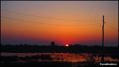 Primul rasarit in Delta Dunarii