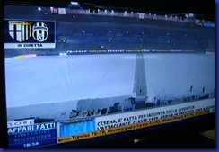 sky tardini