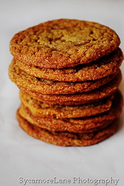 molasses cookies-w