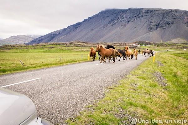 Iceland road (1).jpg