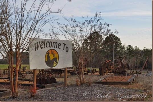 03-21-14 Little Creek RV near Collierville TN 01
