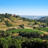 Camino 2010 300.jpg