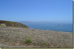 Bodega Head view