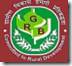 rajasthan gramin bank logo,rajasthan gramin bank recruitment,rajasthan gramin bank jobs