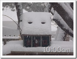 10oclock Snow Storm 01042014 (2)