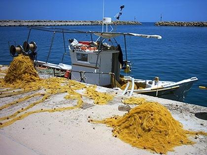 Εκλογές στο Σύλλογο Αλιέων (11-2-2012)