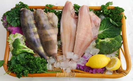fish-food-1