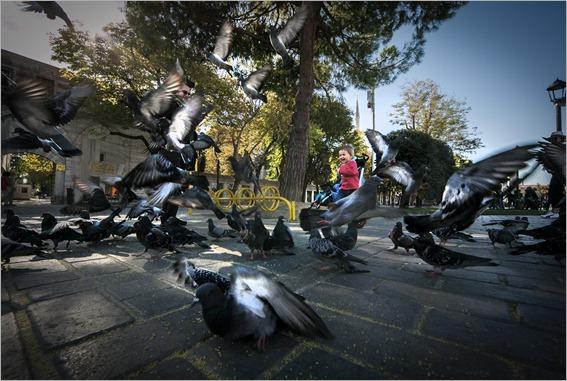 0008- Istanbul-DAZ_4334-Edit