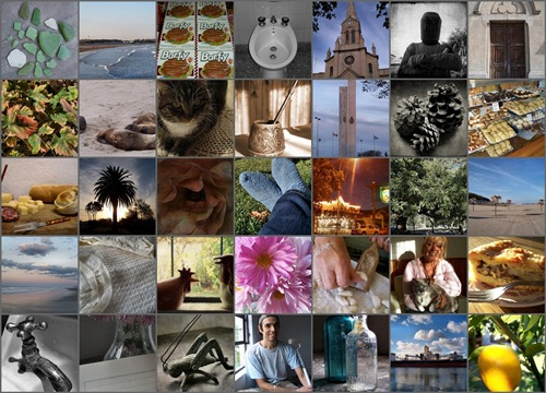 Project 365 Mosaic