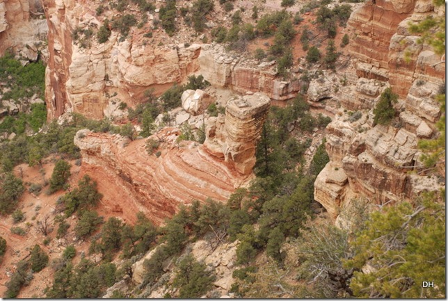 05-17-13 B Grand Canyon North Rim Drive (199)