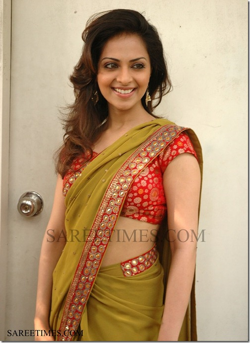Richa_Designer_Saree (2)