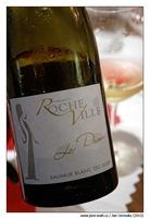 La-Dame-Saumur-Blanc-Sec-2009-Domaine-de-Roche-Ville