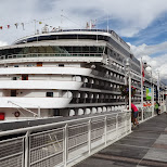 zuiderdam cruise ship in the Vancouver harbor in Vancouver, British Columbia, Canada