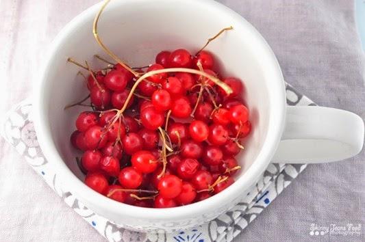garden_cranberriesLR