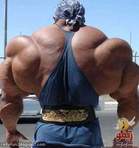 bodybuilding02-refofun[5]