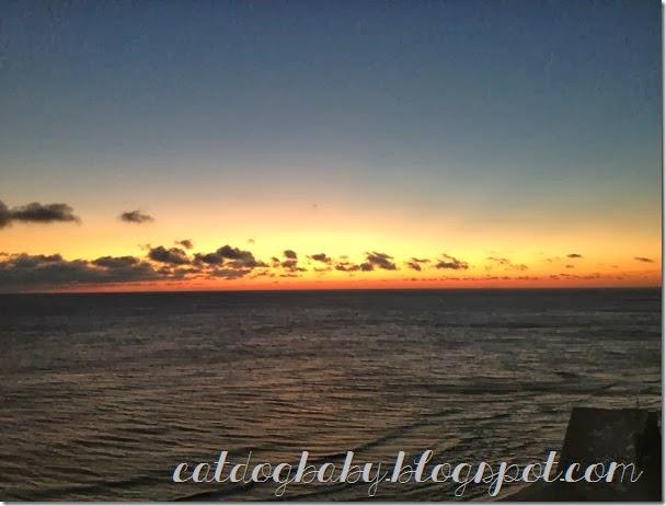 2013-11-09 beach (395)