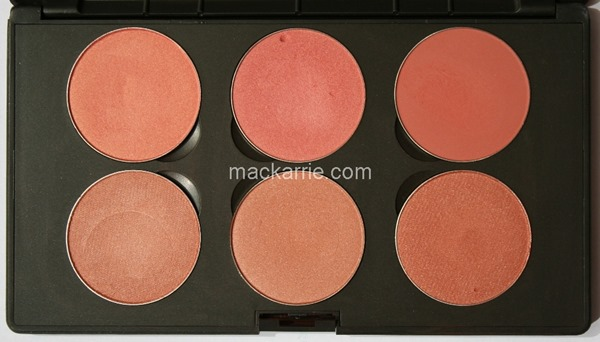 c_PowderBlushX6CustomPaletteMACPeach