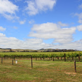Barossa Valley Vineyards - Adelaide, Australia