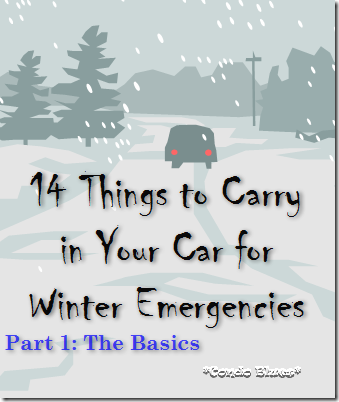 14thingstocarryinyourcarforemergency