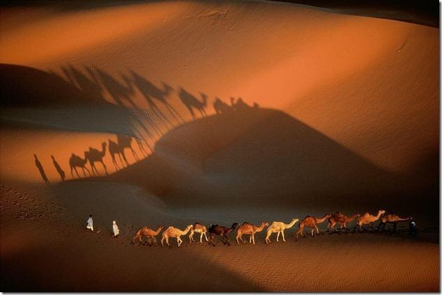 Mauritania Caravane