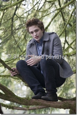 Edward 02
