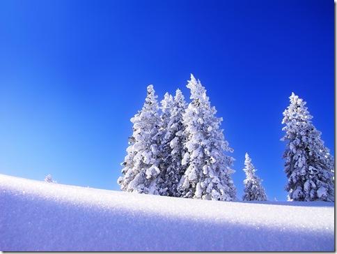 poze desktop - iarna