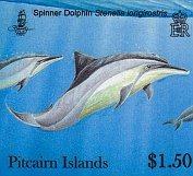 dolphins150c