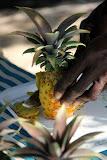 Antiguan Black Pineapple - St. George's, Antigua