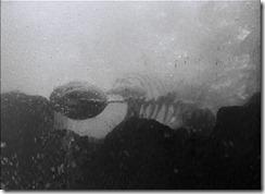Gojira Skeleton