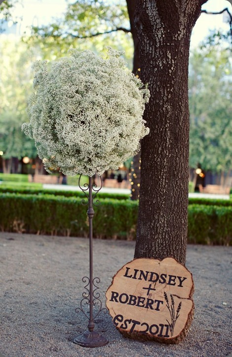 babys breath 395691_10150645717160498_854207759_n lush couture floral design and sarah kate photo