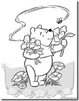 winnie the pooh primavera (2)
