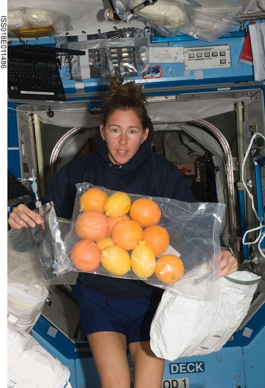 Sandra-Magnus-ISS-00