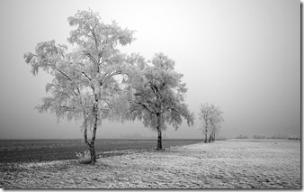 windows_7_desktop_backgrounds_-_first_frost