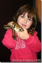 Feb4_Snakes1