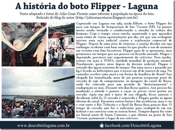 A história do Boto Flipper de Laguna