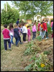 Classi 2°A e 2°B Scuola primaria Padulle all'OrtoQua - ottobre 2013 (12)