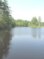 bog reservoir