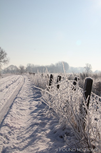 sneeuw Febr 2012 036