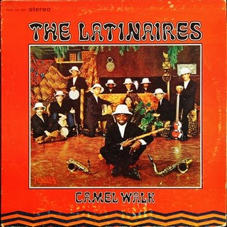 The latinaires camel walk front 1